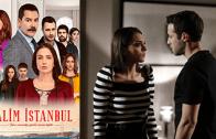 Turkish series Zalim İstanbul episode 20 english subtitles