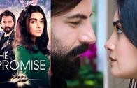 Turkish series Yemin episode 142 english subtitles
