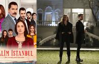 Turkish series Zalim İstanbul episode 25 english subtitles