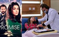 Turkish series Yemin episode 197 english subtitles