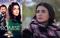 Turkish series Yemin episode 219 english subtitles