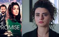 Turkish series Yemin episode 220 english subtitles
